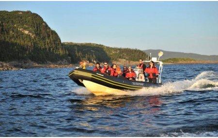 Navette à l'île Grande Basque - Aller / Retour - dans la même journée